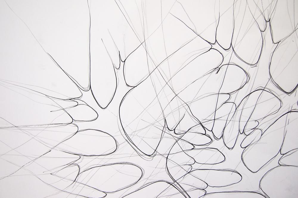 Zeichnung Sumpfeiche, Graphit und Tusche